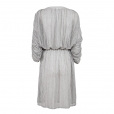 Fine Stripe Dress back
